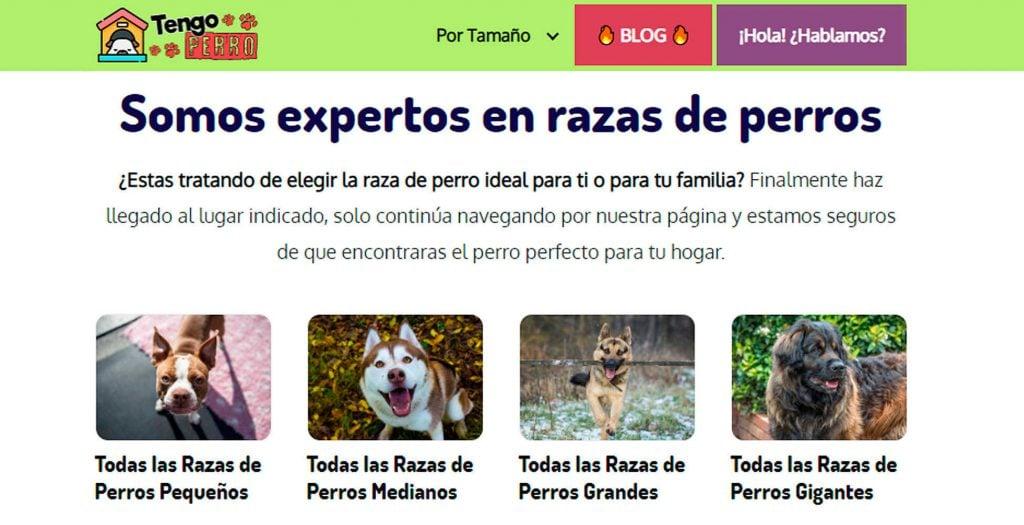 Tengoperro.com